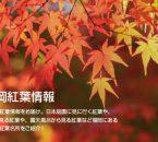 福岡紅葉情報