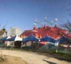木下大サーカスのテント