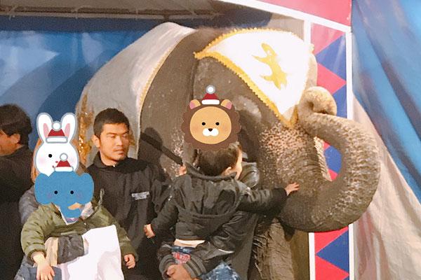 象と記念写真