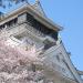 小倉城のお花見スポット「勝山公園」小倉城桜まつり 2017